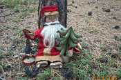 """""""PATTERN"""" This is a Frayed Muslin Original Pattern it is $15.00 plus 3.00 shipping   This Santa is 28"""" tall, the cage is 11 1/2"""" and the tree is 10 1/2"""" this pattern contains complete instructions for all three.  Click on picture for larger view."""